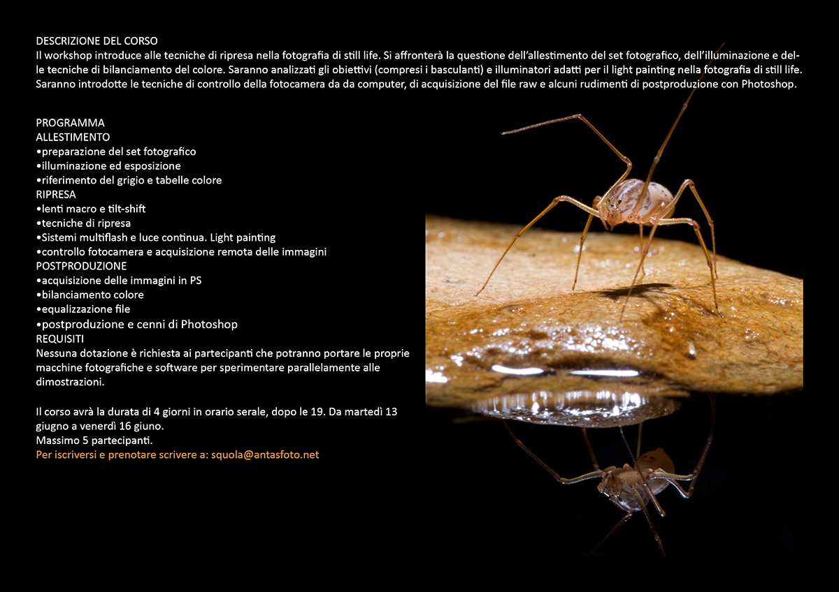 Workshop lo still life e la fotografia naturalistica